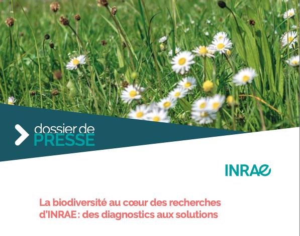 Dossier de presse – La biodiversité au cœur des recherches d'INRAE : des diagnostics aux solutions.